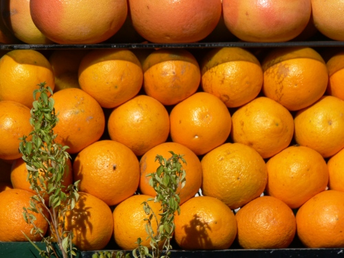 Naranjas de Marrakech